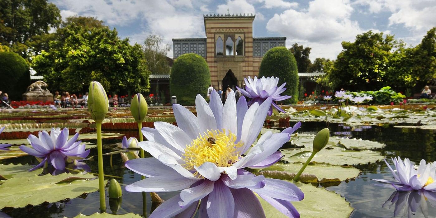 Wilhelma – Zoologisch-Botanischer Garten
